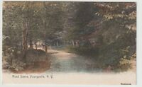 Undated Unused Postcard Road Scene Youngsville New York NY