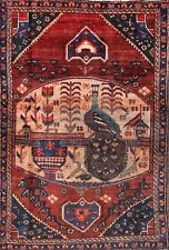 80 Years Old Antique Peacock Pictorial 4x6 Bakhtiari Persian Oriental Area Rug