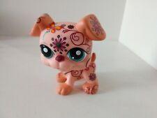 """Authentic Used Littlest Pet Shop JUMBO Giant Deco Tattoo Boxer Dog Blue Eyes 5"""""""
