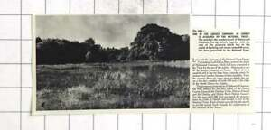 1955 630 Acres Of Holmwood Common Surrey Acquired By NT