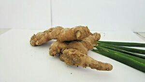 Ceylon-Dried Ginger-Weight loss-Spice Mix-100% Organic-Natural-Medicine-Healthy