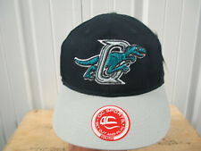 VINTAGE MINOR LEAGUE BASEBALL OGDEN RAPTORS SEWN LOGO BLUE STRAPBACK HAT CAP