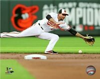 """J.J. Hardy Baltimore Orioles MLB Action Photo (Size: 8"""" x 10"""")"""