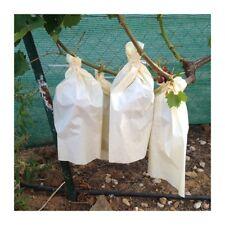 Bolsas protectoras para uvas (100 unidades) (40 cm x 26 cm)