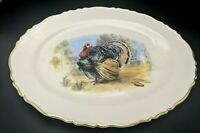 Vintage ROYAL CASTLE Decorative Hand Painted Thanksgiving Plate  Platter Turkey