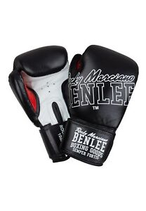 Benlee Boxing Gloves Rockland Training Gloves