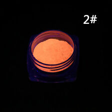 Neon Color Phosphorescent Fluorescent Powder Glow In Dark Nail Art Tips Acrylic
