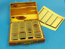 VINTAGE 1944 SLIDES MILITARY, FOOTBALL GAMES, UNIVERSITIES etc + NEGA FILE BOX