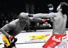 UFC ANDERSON SILVA VS PATRICK COTE NEW ART PRINT POSTER YF1424