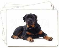 Rottweiler Dog Picture Placemats in Gift Box, AD-RW3P