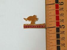 Horse Shoe Skiing Pin  (#1269)