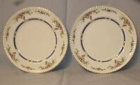 JOHNSON BROTHERS   EASTBOURNE (OLD ENGLISH)  TWO DINNER PLATES w/ small chips