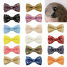 Kids Baby Girls Bowknot Hair Clip Hairpin Glitter Dots Bow Barrettes 36 Colors