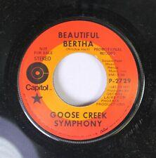 Rock Promo 45 Goose Creek Symphony - Beautiful Bertha / Big Time Saturday Night