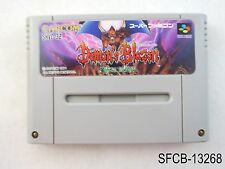 Demons Blazon Crest Super Famicom Japanese Import SFC Demon's Japan US Seller B