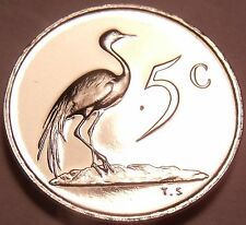 Rare Proof South Africa 1969 5 Cents~Only 12,000 Ever Minted~Blue Crane~Free Shi