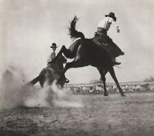 1908/52 Vintage WESTERN COWBOY HORSE Bronco Rodeo ERWIN E. SMITH Photo Art 11x14