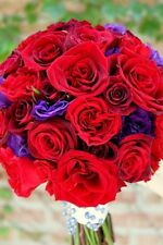 20+ RED AND PURPLE MIX LISIANTHUS FLOWER SEEDS /ANNUA / GREAT CUT FLOWER/ GIFT