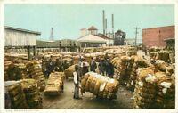 C-1910 Cotton Industry Shipping Detroit Publishing Phostint Postcard 13163