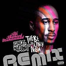 ALI MUHAMMAD SOULS OF MISCHIEF There is Only Now Remix CD DJ PROMO ONLY