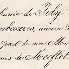 Stéphanie De Joly De Cambaceres 1876 Michel De Mecflet