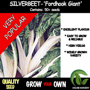 Silverbeet -Fordhook Giant' x50 seeds | Swiss Chard | Vegetable