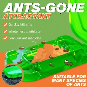 Ants-Gone Attractant