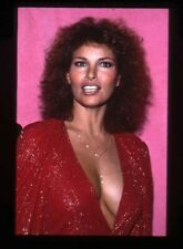 Raquel Welch striking in low cut evening dress Original 35mm Transparency