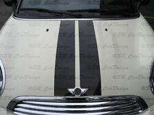 Viper-Streifen Aufkleber Stripes für BMW MINI COOPER ROADSTER R59 Works Union