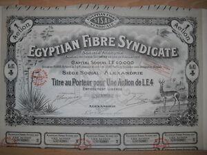 Egyptian Fibre Syndicate 1920 Alexandria    Hochdeko