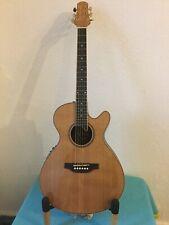 Vintage Pilgrim Round Back Guitar Elecro. (VPG 02N)