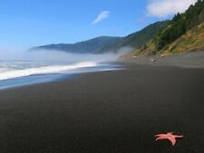 *MUST SELL IMMEDIATELY* CALIFORNIA Black Sand Beach, 1/2 Acre COMMERCIALLY-ZONED