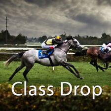 Class Drop - Get Started With Horse Racing Software Today!