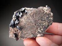 Azurite Crystals on Matrix, Milpillas, Sonora, Mexico