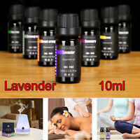 Lavender Essential Oils 10ml - 100% Pure & Natural - Therapeutic Grade Oil