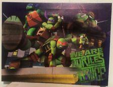 Nickelodeon Teenage Mutant Ninja Turtles Light Up Canvas Wall Art with BONUS LED