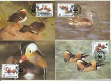 TIMBRE STAMP ZEGEL OISEAUX BIRDS VOGELS 4 MAXI CARTES W.W.F. FIRST DAY 1987