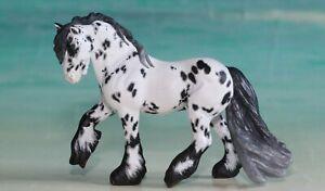 CM Fell Pony Stablemate to Appaloosa Leopard Custom