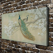 Peacock Michelia alba Paintings HD Print on Canvas Home Decor Wall Art Pictures