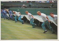 N°239 WIMBLEDON PANINI TENNIS ATP TOUR 1992 STICKER VIGNETTE