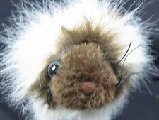 Webkinz Plush Only No Secret Code Lifelike Brown Himalayan Cat Free Ship Cute