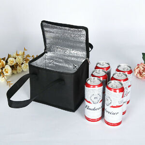Insulated Lunch Bag Box Thermal Cooler Hot Cold Adult Tote Food Travel Picnic