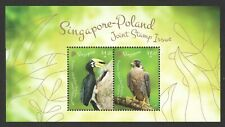 SINGAPORE 2019 POLAND JOINT ISSUE BIRDS (HORNBILL & FALCON) SOUVENIR SHEET MINT