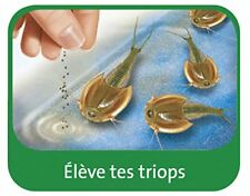 Ravensburger Triops Dinosaures Maxi Science x
