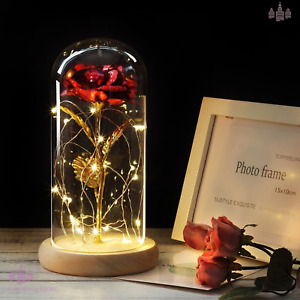 Enchanted Led Rose Lamp  Sparkly Rose
