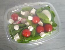 More details for  clear hinged plastic large salad containers disposable 150 x 120 x 40mm 650cc