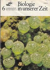 Biologie in unserer Zeit, No. 6 Dezember 1982