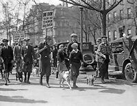 "1925 Parade of Muts Vintage Old Dogs Pets Walking Photo  8.5"" x 11"" Reprint"