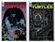 Teenage Mutant Ninja Turtles #53 IDW Regular & Variant Cover (8/22/18 1st Print)