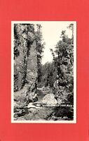 RPPC Ashland County Wisconsin,Mellen,WI Copper Canyon Copper Falls State Park(1)